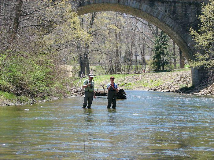 Casselman River Flyfishing